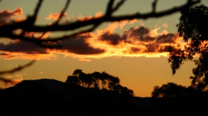 Sonya Oksana Heaney Canberra Sunset 8th July 2013