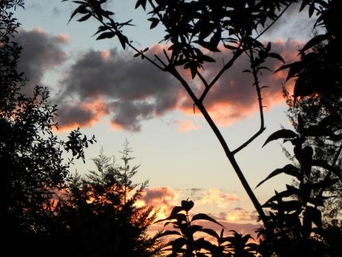 Canberra Sunset 24th September 2013 Sonya Heaney