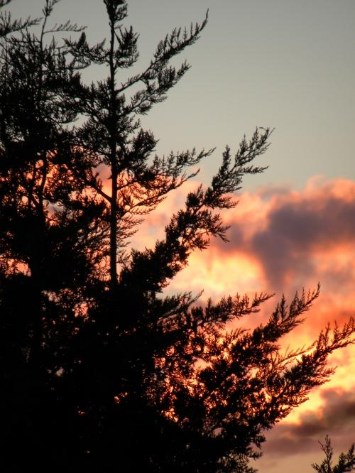 Sunset Canberra 24th September 2013 Sonya Heaney