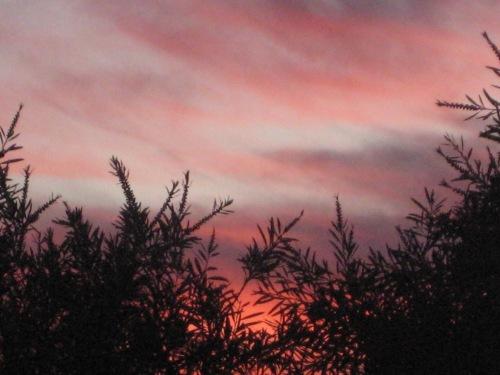 Canberra sunset 27th September 2013 Sonya Heaney