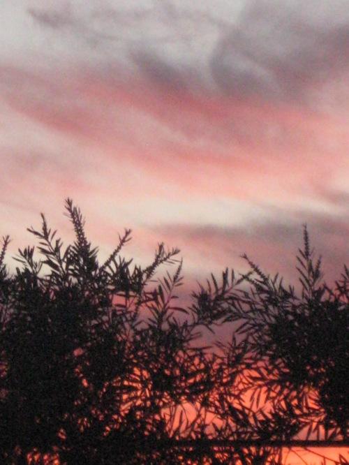 Sunset Canberra 27th September 2013 Sonya Heaney