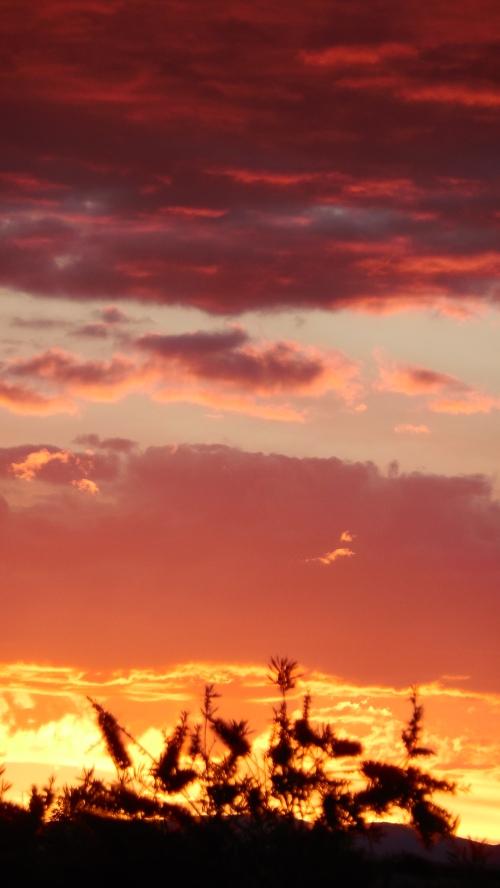 Sunset Canberra Australia 19th November 2013 Sonya Heaney Oksana Heaney