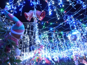 15th December 2013 Sonya Heaney Oksana Heaney Bissenberger Crescent and see some of the best Christmas lights in Canberra