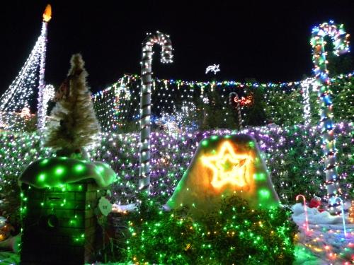 15th December 2013 Sonya Heaney Oksana Heaney Bissenberger Crescent Christmas lights - Canberra