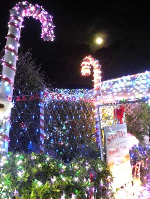 15th December 2013 Sonya Heaney Oksana Heaney Bissenberger Crescent Christmas lights in Canberra