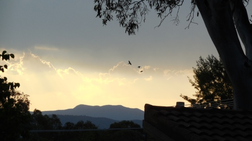 Hot Canberra Australia Evening Sky Sunset 15th January 2014 Sonya Heaney Oksana Heaney