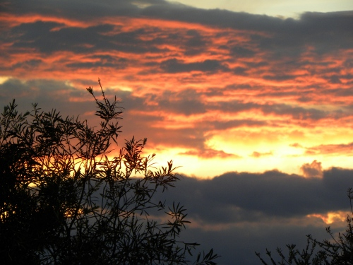 Canberra Australia Sunset 16th December 2012 Sonya Heaney