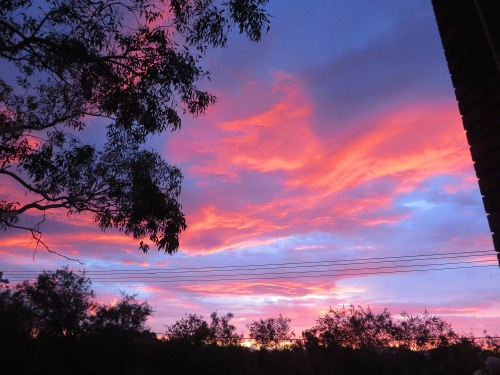 Spring in Tuggeranong Canberra Australia Sunset 24th October Sonya Heaney