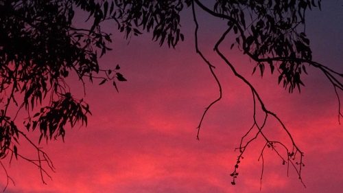 Spring Sunset Tuggeranong Canberra Australia 24th October 2014 Sonya Heaney 1