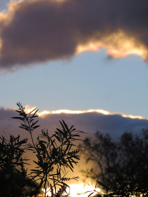 Tuggerananong Canberra Australia Sunset 28th October 2014 Sonya Heaney 2