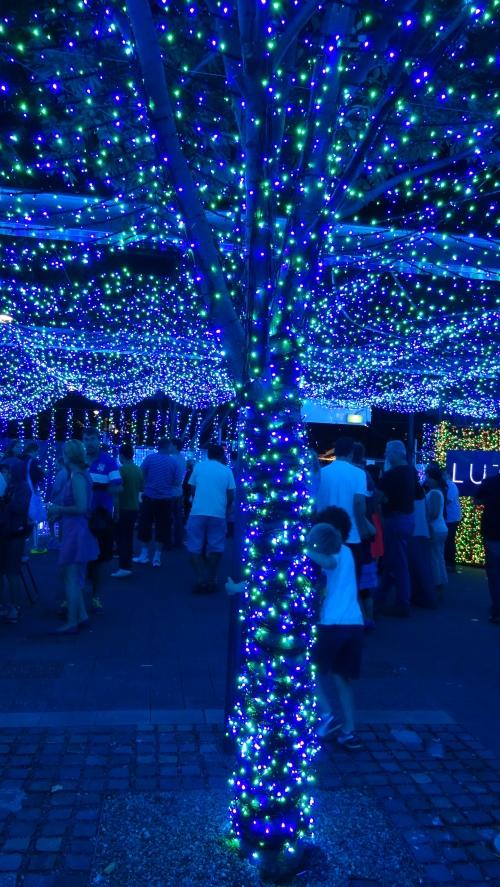 Christmas Lights Canberra Australia 20th December 2014 Sonya Heaney Oksana Heaney 1