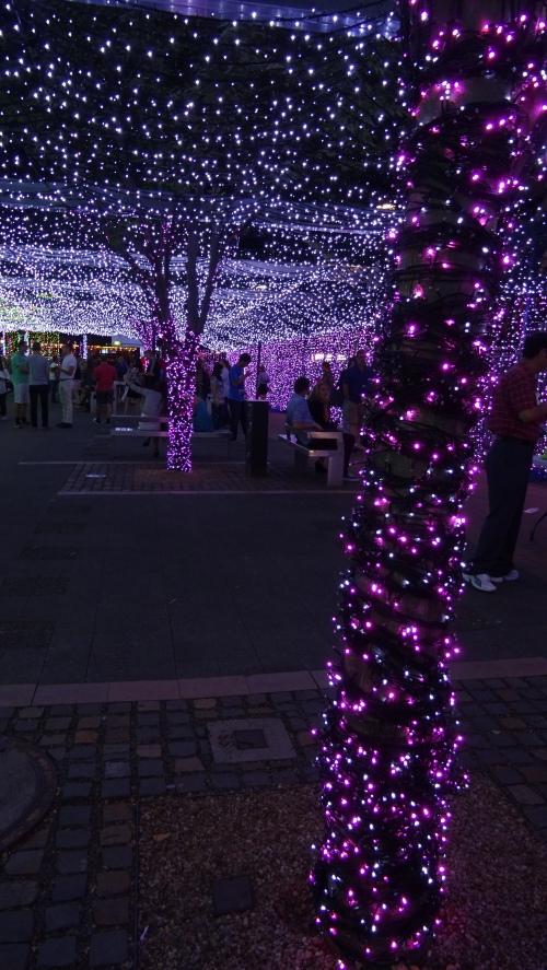 Christmas Lights Canberra Australia 20th December 2014 Sonya Heaney Oksana Heaney 2.JPG
