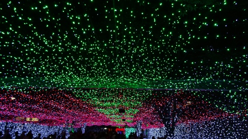 Christmas Lights Canberra Australia World Record 20th December 2014 Sonya Heaney Oksana Heaney