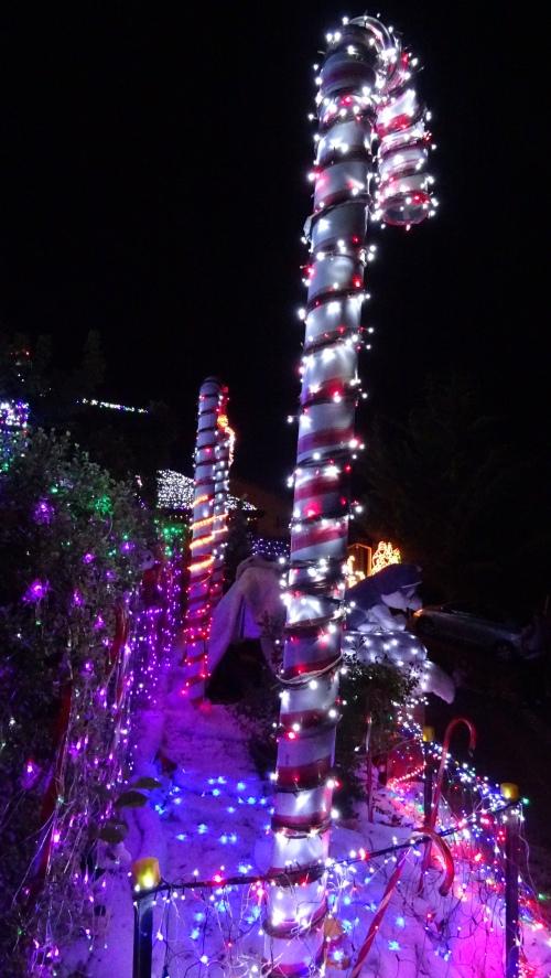 Christmas Lights Candy Canes Tuggeranong Canberra Australia 21st December 2014 Sonya Heaney Oksana Heaney