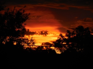 Sunset Canberra Australia December 2014 Sonya Heaney Christopher Heaney