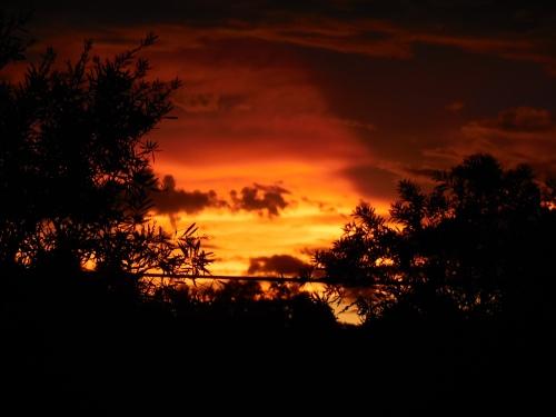 Sunset Canberra Australia December 2014 Sonya Heaney Christopher Heaney