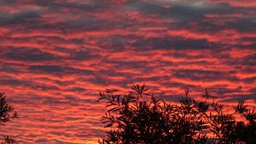 Canberra Sunset Tuggeranong Australia 30th January 2015 Sonya Heaney 2