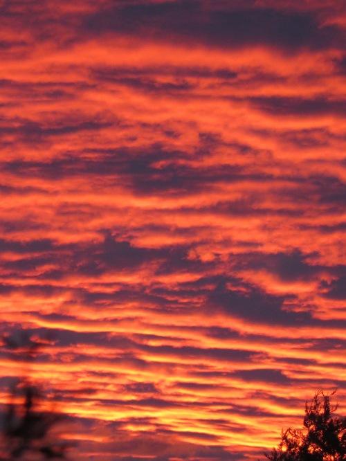 Canberra Sunset Tuggeranong Australia 30th January 2015 Sonya Heaney 3