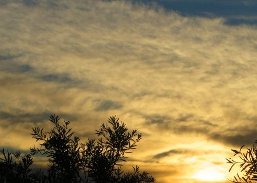 Sunset Tuggeranong Canberra Australia 17th January 2015 Sonya Heaney 1