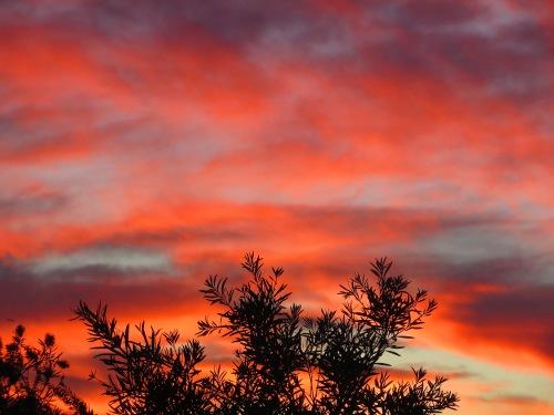 Sunset Tuggeranong Canberra Australia 17th January 2015 Sonya Heaney