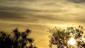 Sunset Tuggeranong Canberra Australia 1st January 2015 Sonya Heaney