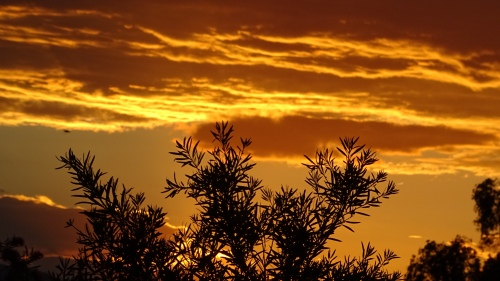 Sunset Tuggeranong Canberra Australia 22nd January 2015 Sonya Heaney 4