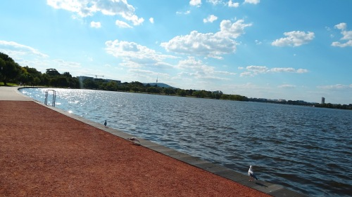 Kingston Foreshore Canberra Australia  Lake Burley GriffinSummer 28th February 2015 Sonya Heaney Oksana Heaney. - Copy