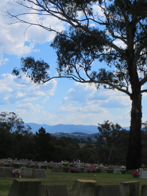 Queanbeyan Lawn Cemetery New South Wales near Canberra Australia. 8th February 2015. Sonya Heaney.