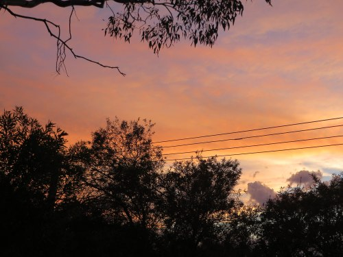Sunset Summer Tuggeranong Sky Canberra Australia Garden Sonya Heaney 16th February 2015