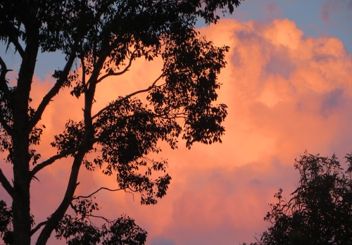 Tuggeranong Sunset Canberra Australia 26th February 2015 Sonya Heaney