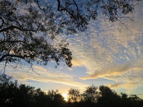 Clouds Sunset Tuggeranong Canberra Australia 3rd March 2015 Garden Sonya Heaney