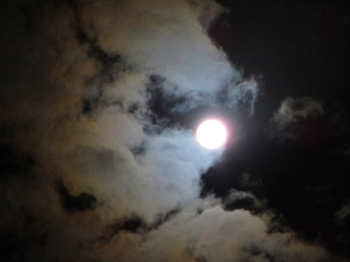Full Moon Tuggeranong Canberra Australia 5th April 2015 Sonya Heaney.. (2)