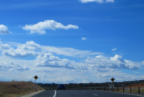Kangaroo Road Signs Queanbeyan Australia Sonya Heaney 12th April 2015