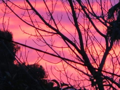 Sunset Gowrie Tuggeranong Canberra Australia Sonya Heaney 21st April 2015