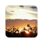 Canberra Sunset Square Sticker Sonya Heaney Zazzle Store