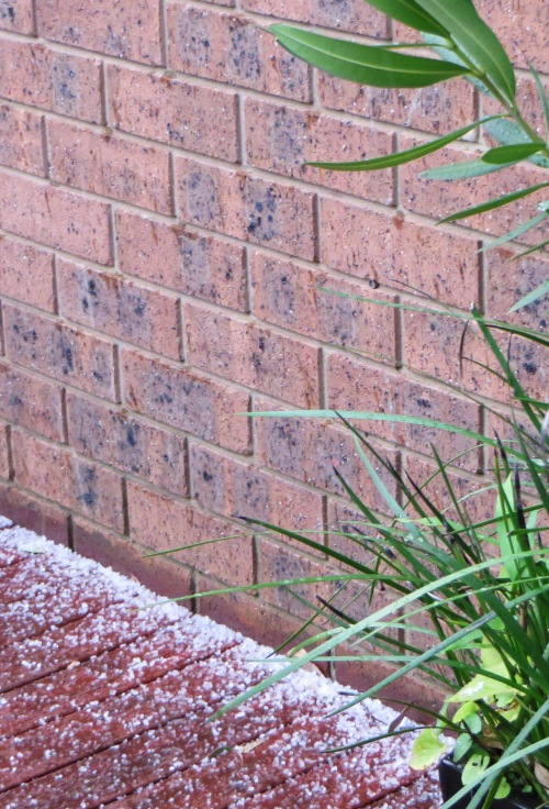 Hail Canberra Australia Sonya Heaney 13th May 2015