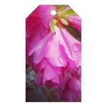 Pink Spring Gift Tag Sonya Heaney Zazzle Store