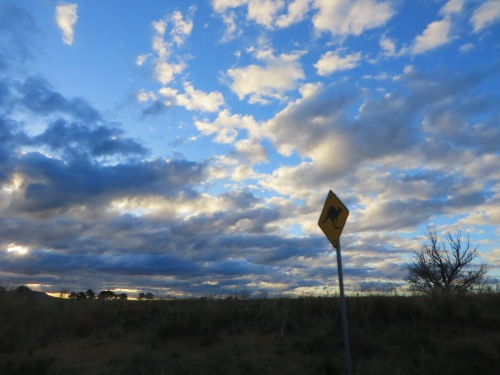 Sky Clouds Sunset Canberra to Queanbeyan Australia Kangaroo Sign Sonya Heaney 3rd May 2015