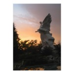 Sunset Angel Ukraine Note Card Sonya Heaney Zazzlep Store