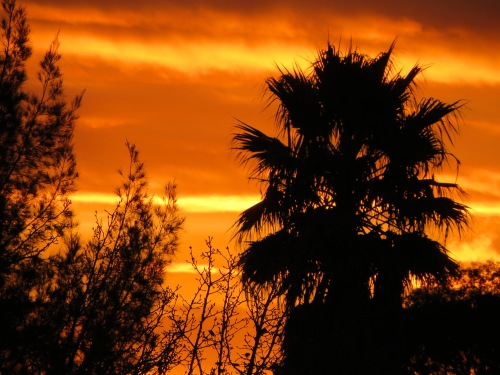 Sunset Tuggeranong Canberra Australia  1st May 2015 Sonya Heaney .