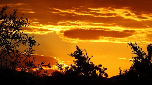 Sunset Tuggeranong Canberra Australia 22nd January 2015 Sonya Heaney sky Clouds Orange Nature
