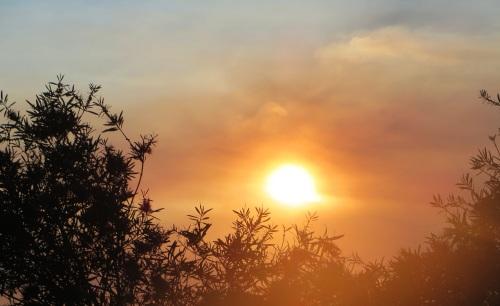 Canberra Australia Sunset Spring Sonya Heaney 18th November 2015 Sky Clouds Sun Garden Tuggeranong Nature2