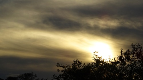 Sunset Gowrie Tuggeranong Canberra Australia Sonya Heaney 30th October 2015 Sky Clouds Spring Garden Nature