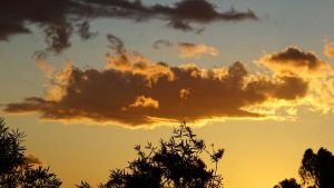 Sunset Tuggeranong Canberra Australia Spring Sonya Heaney 13th November 2015 Garden Sky Clouds Nature