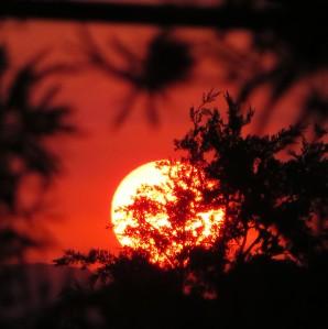 Sunset Tuggeranong Canberra Australia Spring Sonya Heaney Sun Sky 18th November 2015