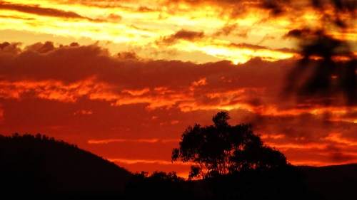 Sunset Brindabella Ranges Canberra Australia Sonya Oksana Heaney 20th January 2016 Summer Sky Clouds Nature