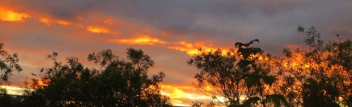 Autumn Sunset Tuggeranong Canberra Australia Sonya Heaney 21st March 2016 Sky Clouds Sun Garden Nature