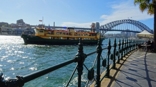 Sydney Harbour and Sydney Harbour Bridge Ferry Australia 3rd March 2016 Sonya Oksana Heaney Water Sun