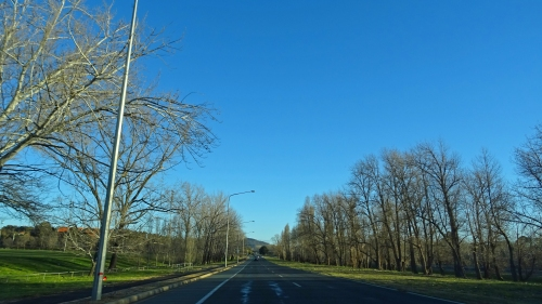 14th August 2016 Sonya Oksana Heaney On the road Canberra Australia Winter Trees Blue Sky Road Nature