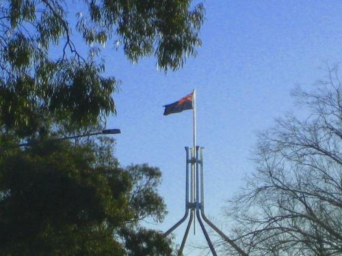Parliament House Canberra Sonya Heaney14th August 2016 Capital Hill FLag Trees.JPG.jmdqiob